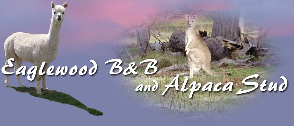 Eaglewood B&B and Alpaca Stud